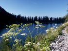 Frühmorgens am Lahngangsee