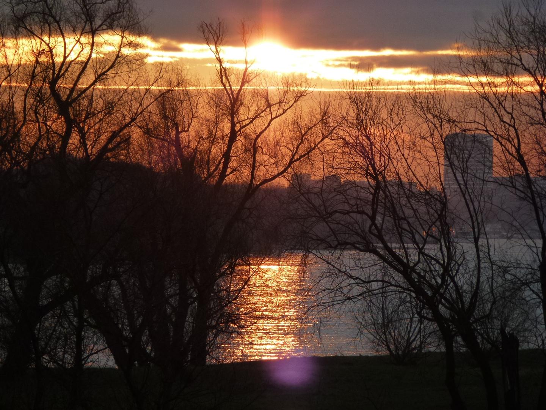 Frühmorgens am Rhein - die Sonne -