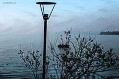 Frühmorgens auf dem Bodensee