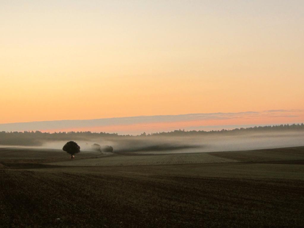 Frühmorgens bei Sonnenaufgang