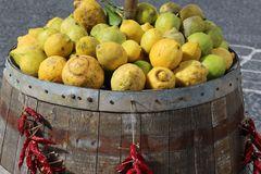 Fruits of Ischia