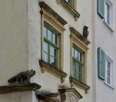 ... Fuchs und Eule