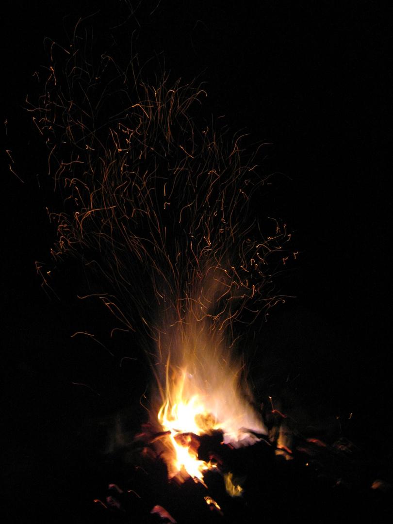 Fuego vivo