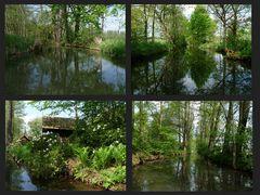 Fünf Stunden so durch den grünen Spreewald.....