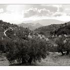 Fuente de la Peña, Jaén