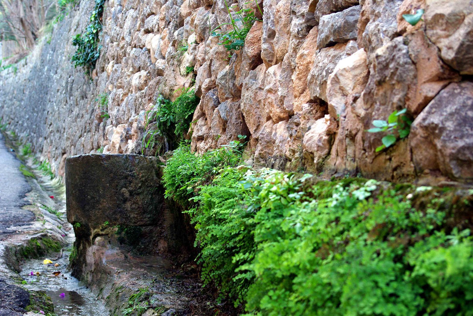 Fuente en Deià