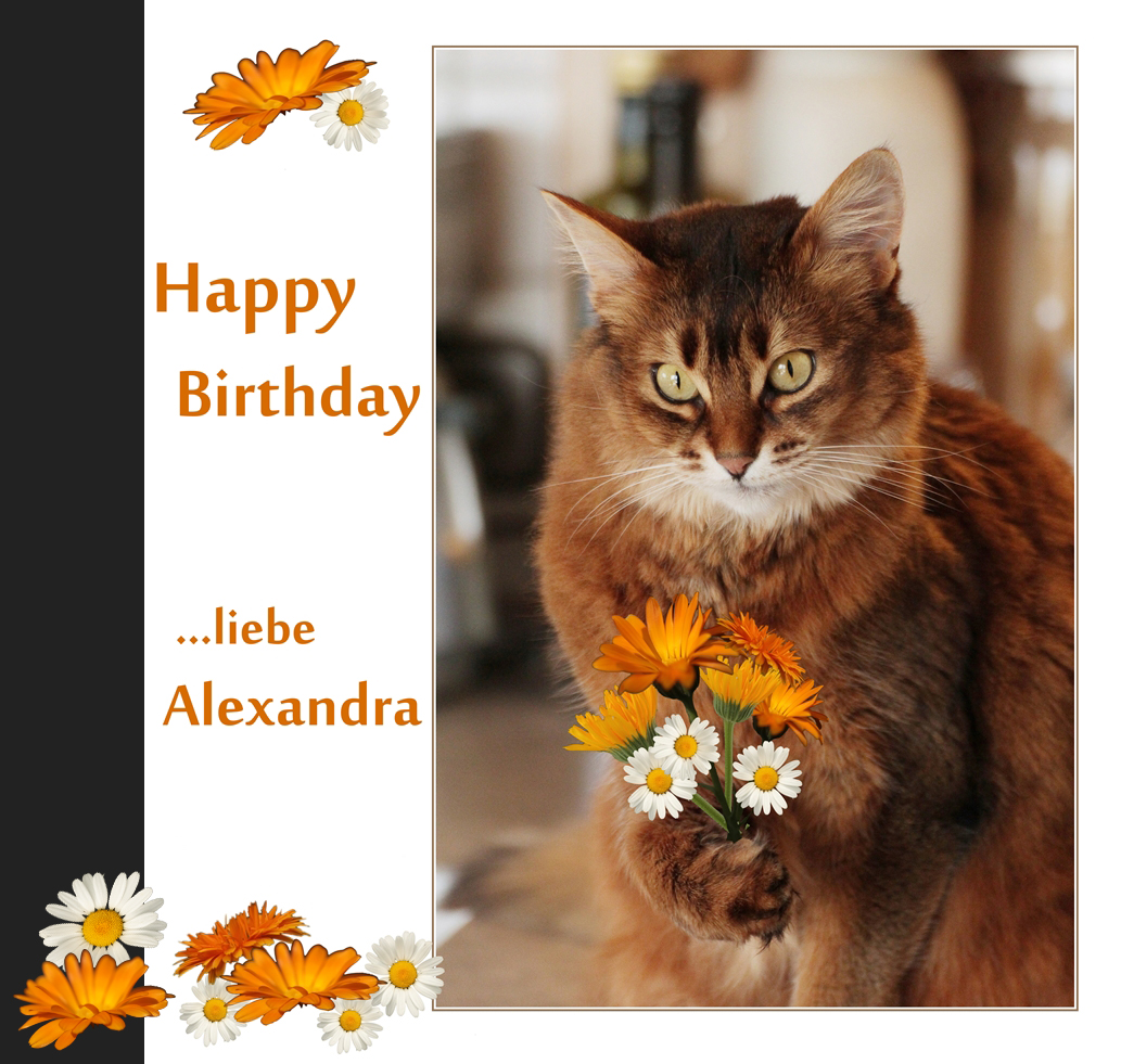 Bilder Zum Geburtstag Fur Alexandra