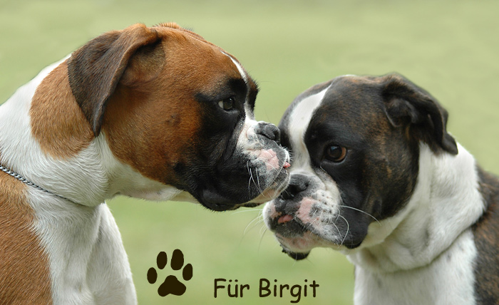 Für Birgit