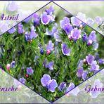 Für dich liebe Astrid
