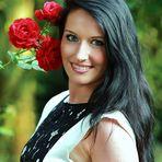 für dich rote Rosen