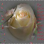Für Dich sollen Rosen regnen