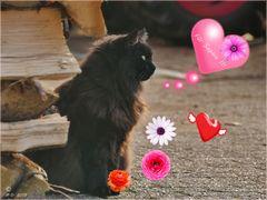 Für die süße Sophie zum Valentinstag!