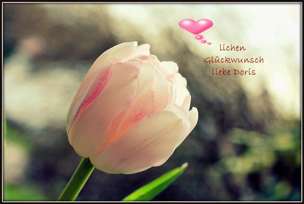 ~ für Doris ~
