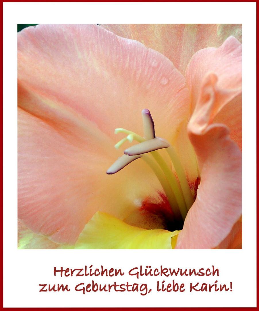 Für Eine Liebe Freundin Foto Bild Pflanzen Pilze Flechten
