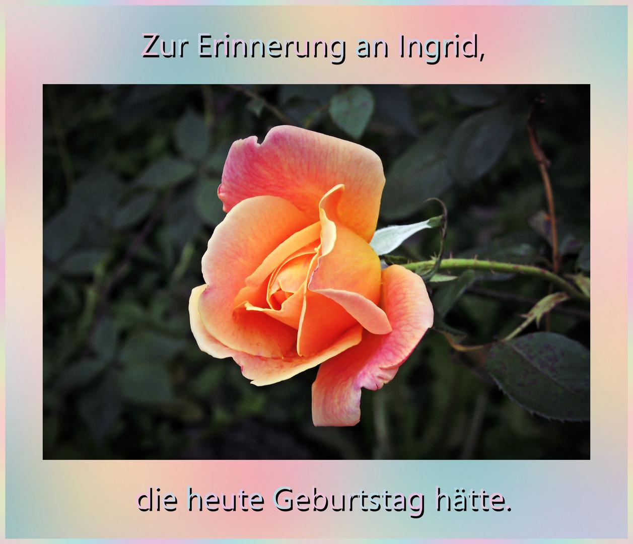 Für Ingrid