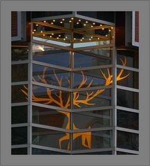 Für Weihnachten schon gerüstet, ---Galariea Kaufhof in Münster----