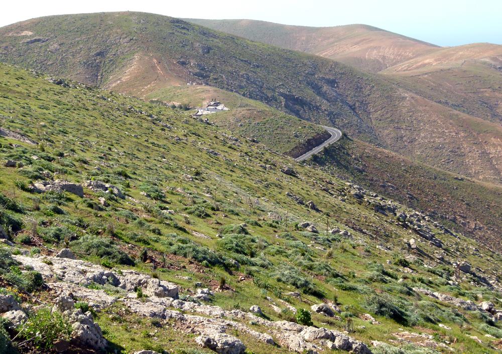 ...Fuerteventura 2011...004...