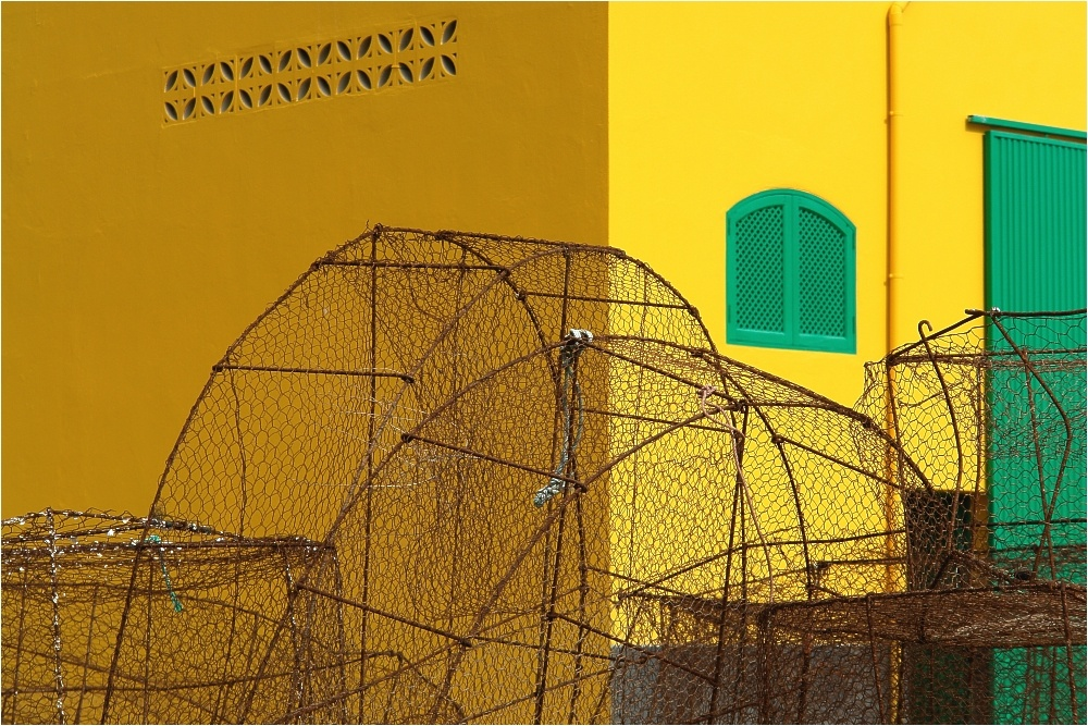 Fuerteventura 22
