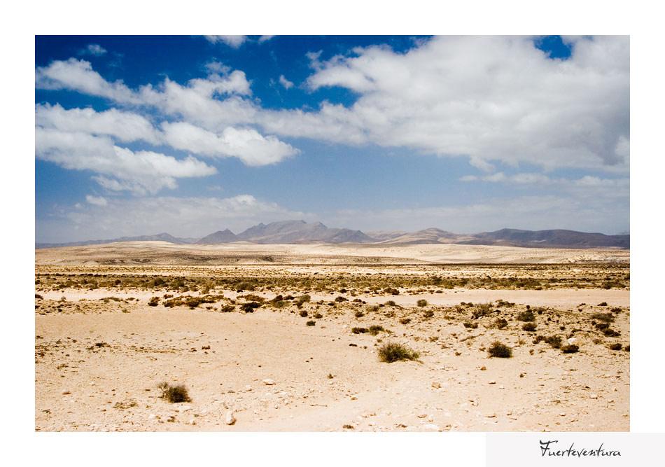 ... Fuerteventura ...