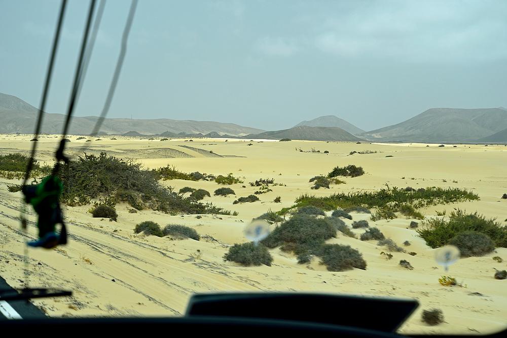 Fuerteventura Impression Juni-Juli 2013 Nr.40.