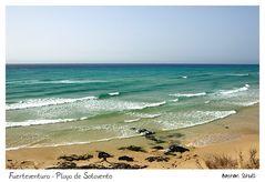 Fuerteventura - Playa de Sotavento