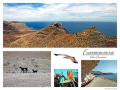 Fuerteventura Postal # 4