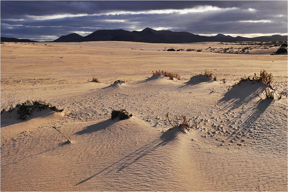 Fuerteventura, Sonnenuntergang über der Dünenlandschaft bei Corralejo