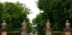 Fulda - Fasanerie (II)