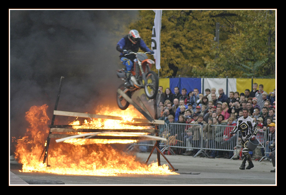 Fun- & Action Stuntshow