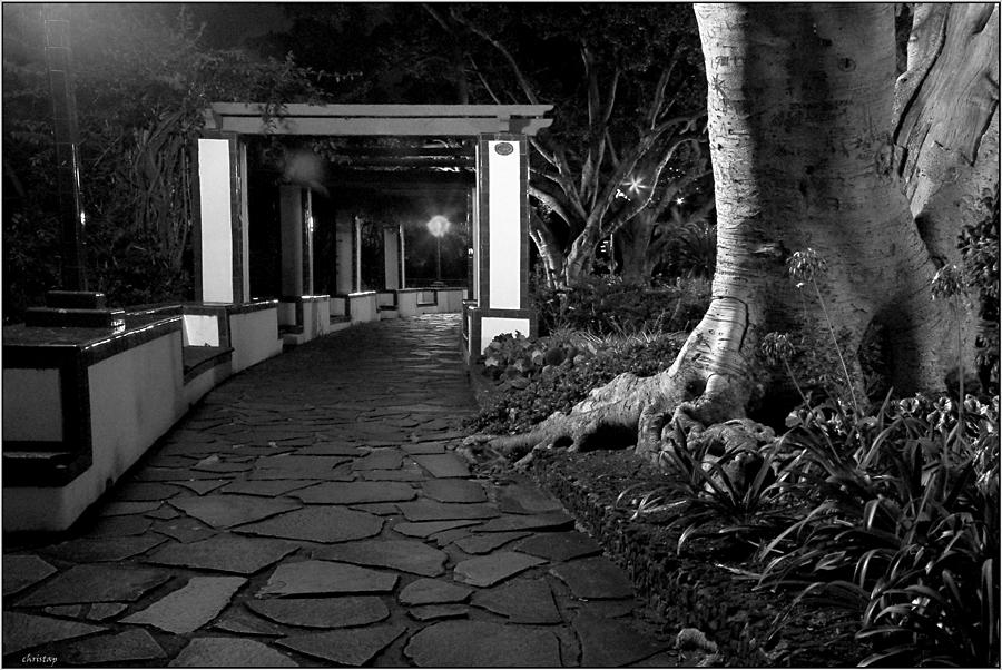 Funchal bei Nacht V
