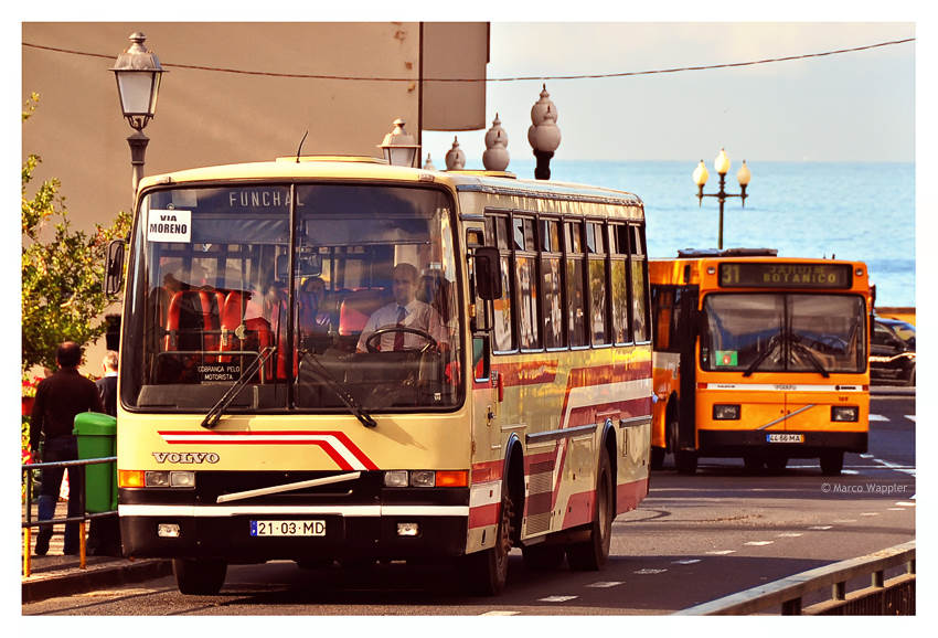 Funchal - Bus