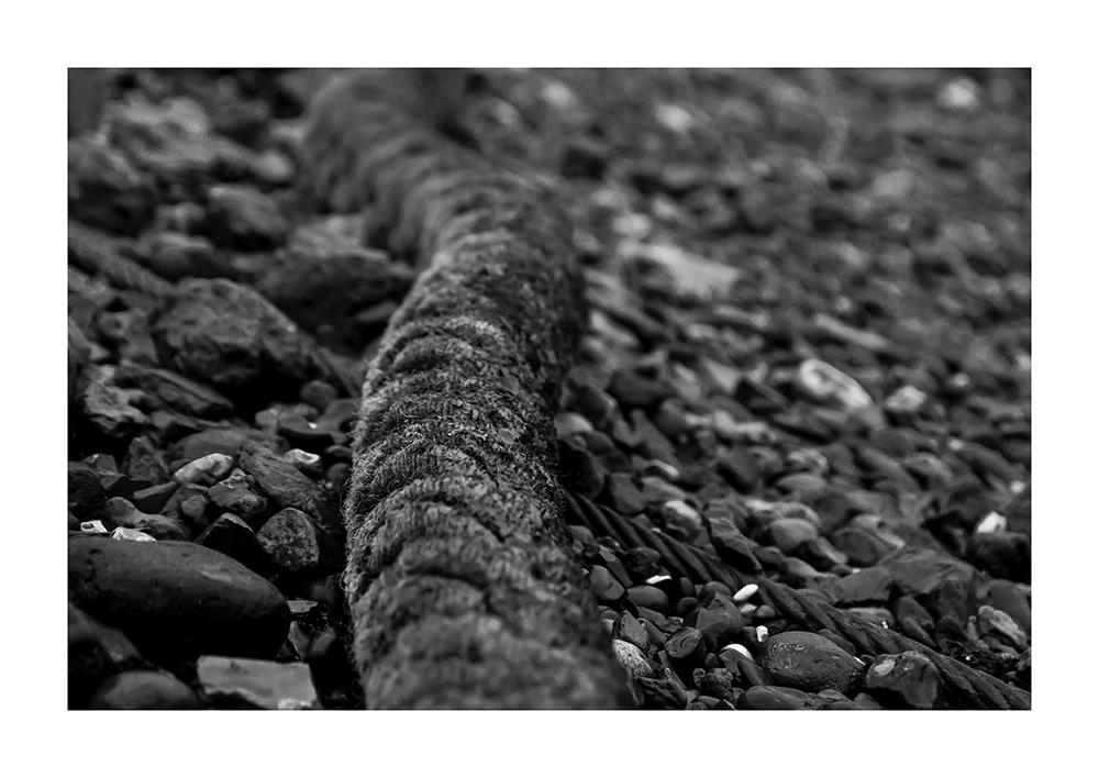 Fund am Themse-Ufer