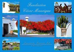 Fundacíon César Manrique Carta