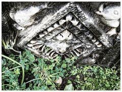 Fundstück am Boden