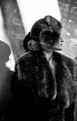 fur is beauty