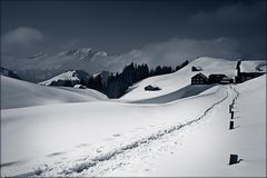 Furna...Scära Winter