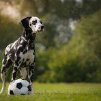 Fußball fällt aus...