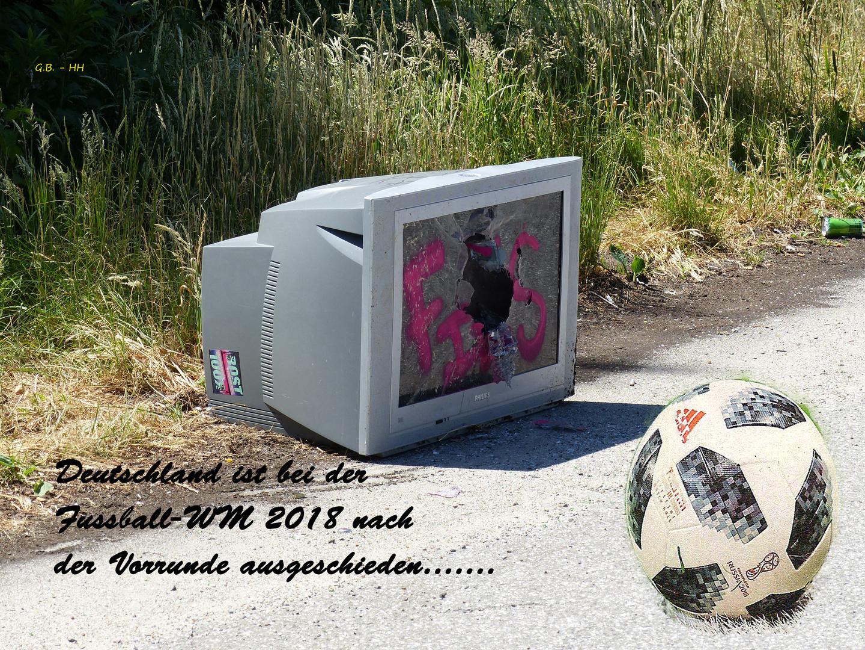 fussball wm 2018 foto bild sport spezial. Black Bedroom Furniture Sets. Home Design Ideas