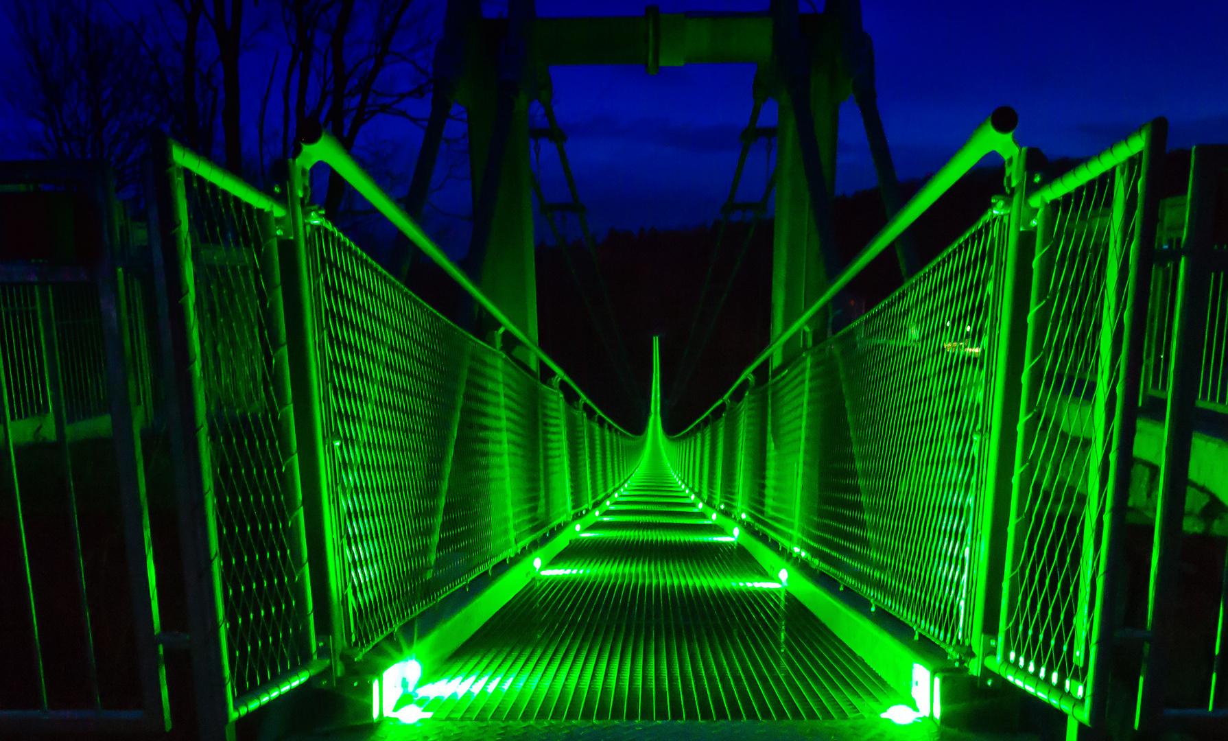Fußgängerhängebrücke im Harz