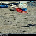 GABBIANI A MERGELLINA