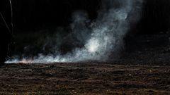 Gärtner brennt Unkraut ab