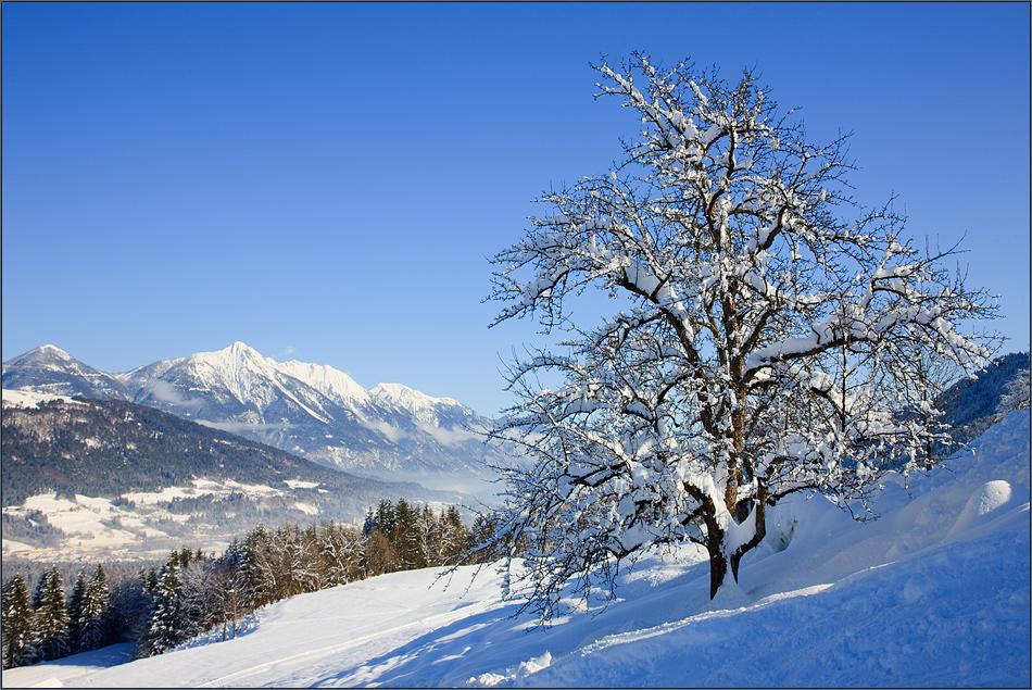 Gailtaler Alpenblick