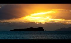 [ Galápagos - The Enchanted Islands ]