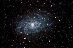 Galaxie M33 im Sternbild Dreieeck
