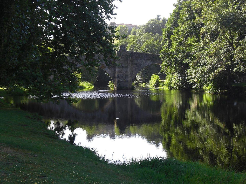 Galicia verde.
