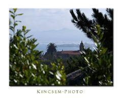 Galizien oder der Blick durchs Gebüsch