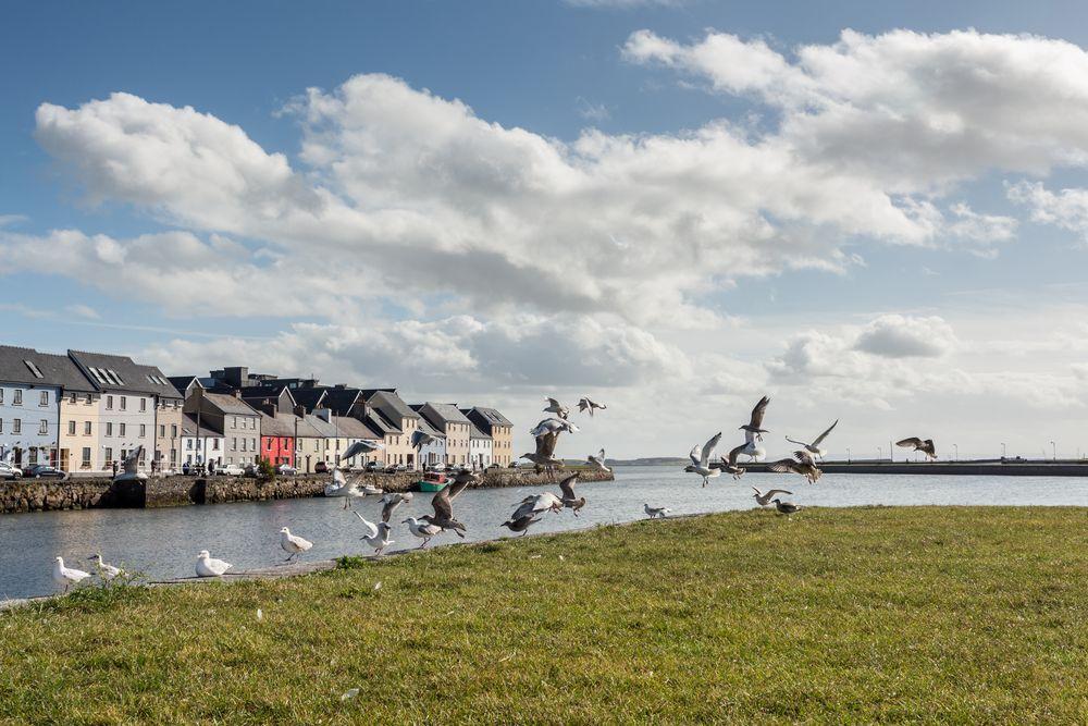 Galway II