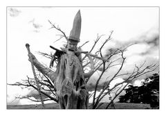 Gandalf I - Northland Neuseeland