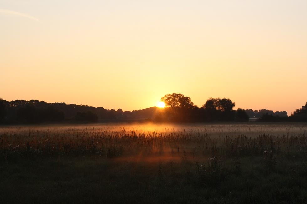 Ganz früh am Morgen ......