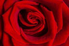 - ganz in Rot -